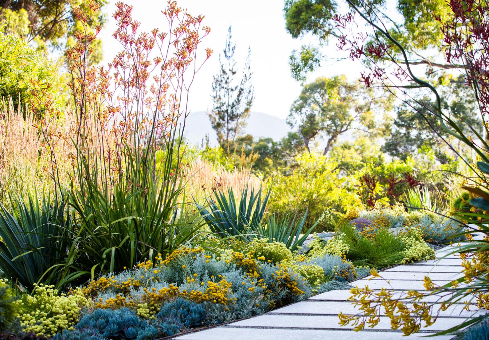 coningham garden image