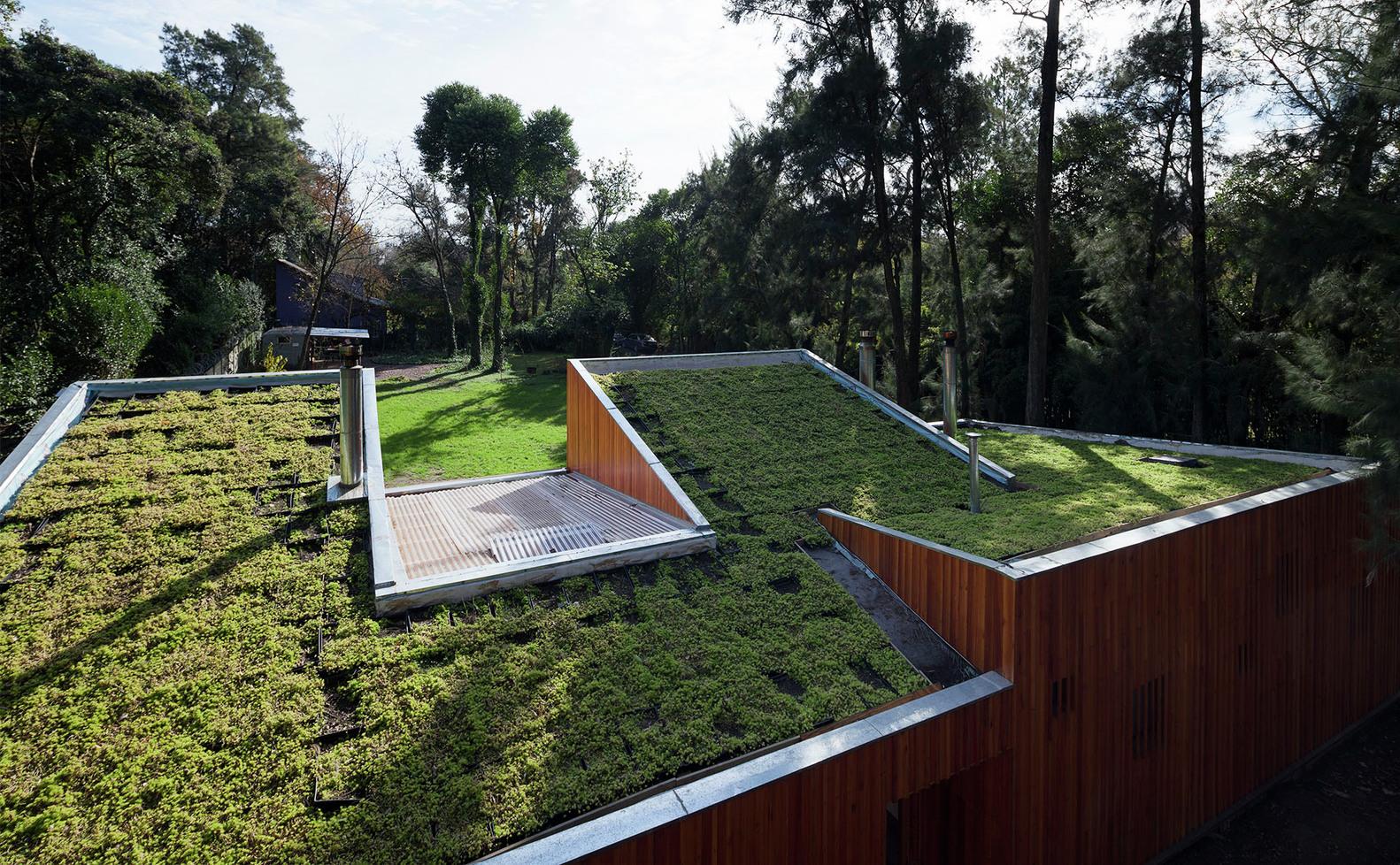 AA House Green Roof